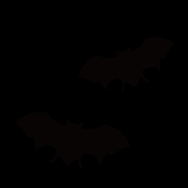 コウモリの駆除も承ります~福岡の害虫駆除・害獣駆除ならBIO RESCUE 虫の110番へ